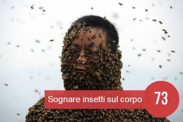 sognare insetti sul corpo