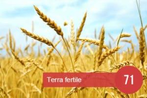 terra fertile